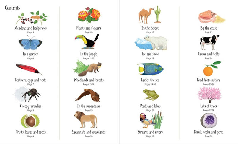 Usborne 1000 Things in Nature - Village Toys